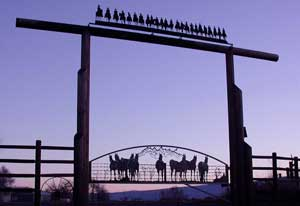 Thorp Ranch Gate
