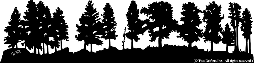 Aspen Tree Coat Rack