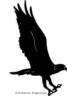 Bird - Osprey Weathervane