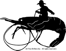Bucking Shrimp Weathervane